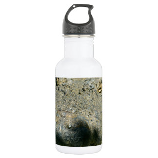 grrr gator chomp stainless steel water bottle