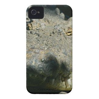 grrr gator iPhone 4 Case-Mate case