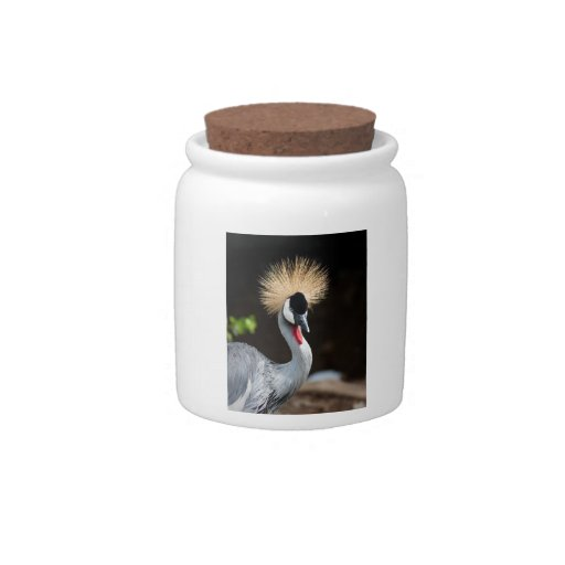 Grúa coronada negro jarra para caramelo