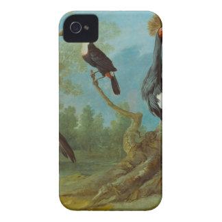 Grúa del Demoiselle, Toucan, y grúa copetuda iPhone 4 Protectores