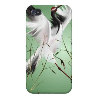 Grúa en la caja de bambú de la mota iPhone 4 protectores