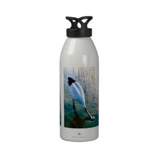 Grúa que alimenta en agua poco profunda botella de beber