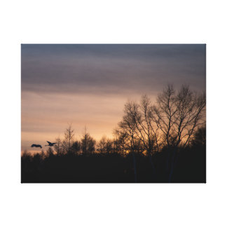 Grúa Rojo-Coronada en la puesta del sol Lona Estirada Galerias