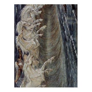 ¿Grúa, técnica 1893 de Gualterio Neptuns Pferde? l Postal