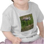 Grúa y huevo de Sandhill Camiseta