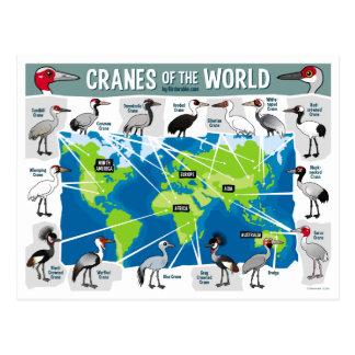 Grúas del mundo tarjeta postal