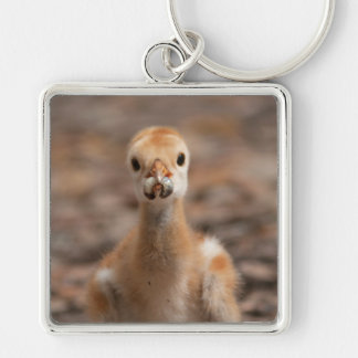 Grubs are the Best Key Chain