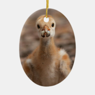Grubs are the Best Double-Sided Oval Ceramic Christmas Ornament