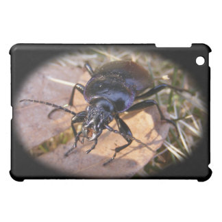 Gruesome Beetle ~ case Cover For The iPad Mini