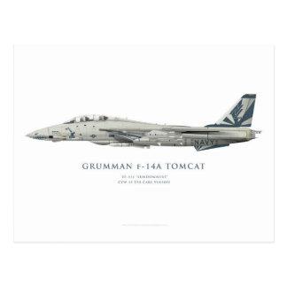 """Grumman F-14 A Tomcat VF-111 """"Sundowners"""" Squadron Postcard"""