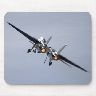 Grumman F-14 Tomcat Tapete De Ratón