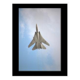 Grumman F-14A Tomcat_Aviation Photograp Postcard