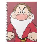 Grumpy 2 journal