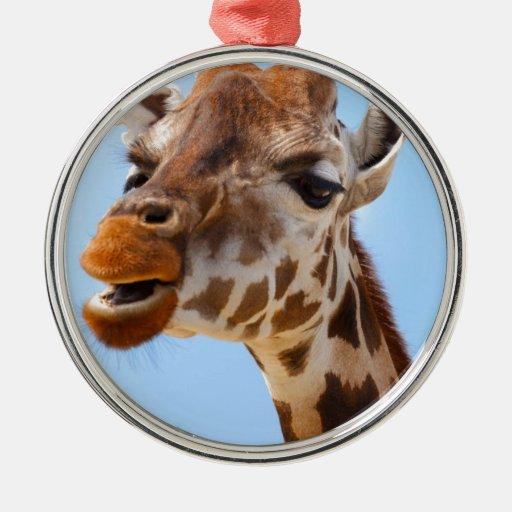 Grumpy African giraffe Round Metal Christmas Ornament