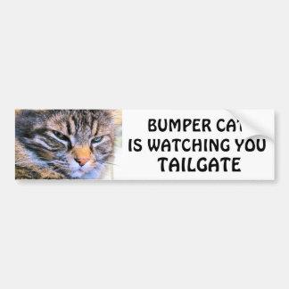 Grumpy Angel Bumper Cat is watching TAILGATE 31 Bumper Sticker
