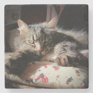 Grumpy Angel Cat is Suspicious Stone Coaster
