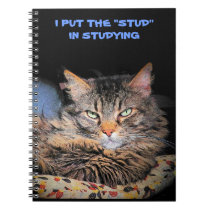 Grumpy Angel puts the Stud in Studying Notebook