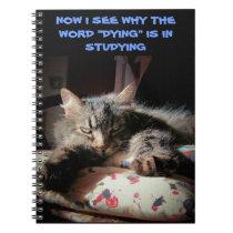 Grumpy Angel: Studying is killin' me Notebook