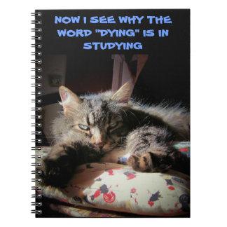 Grumpy Angel: Studying is killin' me Note Books