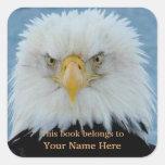 Grumpy Bald Eagle Square Sticker