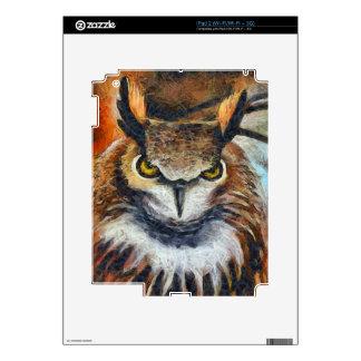Grumpy Big Ear Owl Decals For iPad 2