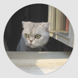 Grumpy Cat 2.0 Classic Round Sticker