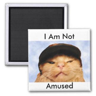 Grumpy Cat 2 Inch Square Magnet