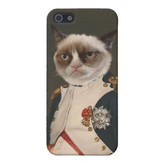 Grumpy Cat Classic Painting iPhone 5 Cover