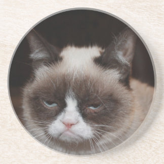 Grumpy Cat Costers v3 Sandstone Coaster