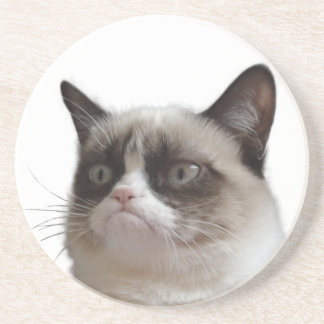 Grumpy Cat Glaring Coasters