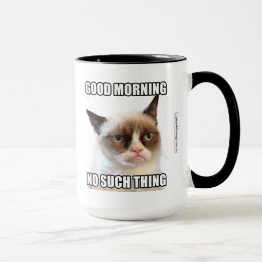 Good Personal Boundaries Funny Cat