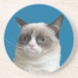 Grumpy Cat Grumpy Stare Coasters