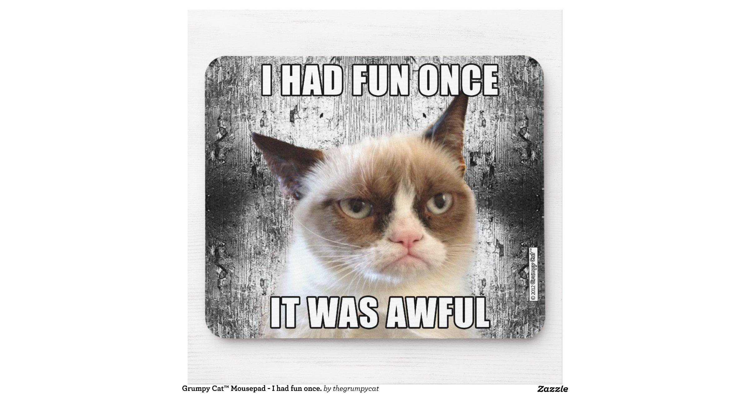 Grumpy Cat I Had Fun Once