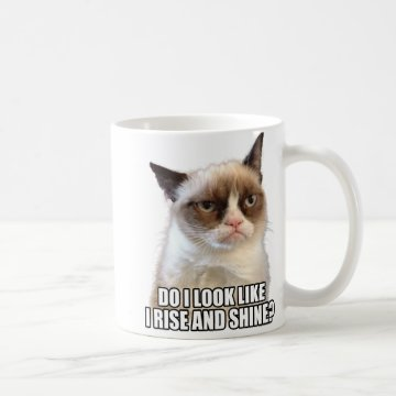 Grumpy Cat Mug at Zazzle