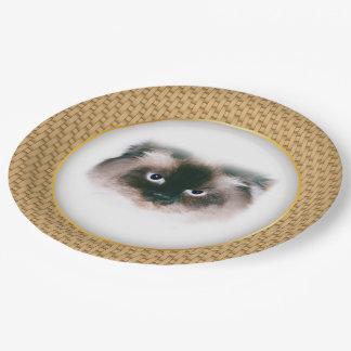 Grumpy Cat Paper Plate
