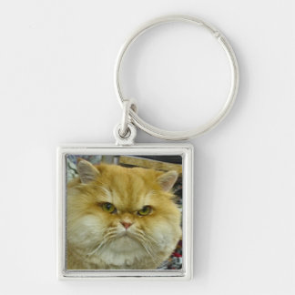 Grumpy Cat Photo Key Chain