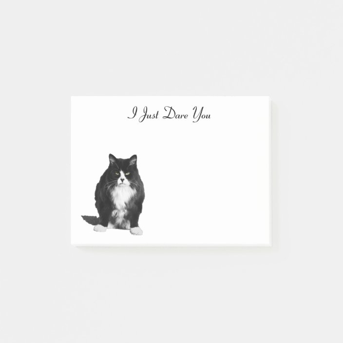 CUTE Unique Gift! Grumpy Cat Kitty Just a Note Custom Post It Notes