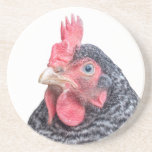 Grumpy Chicken Funny Frowning Hen Photo Coasters