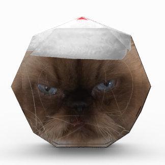 Grumpy Christmas Cat Award