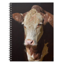 Grumpy Cow Notebook