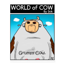 Grumpy Cow Postcard