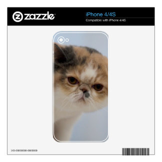 Grumpy Face Cat iPhone 4 Skins