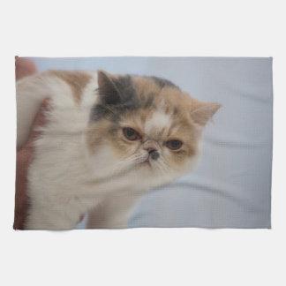 Grumpy Face Cat Kitchen Towel
