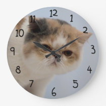 Grumpy Face Cat Large Clock