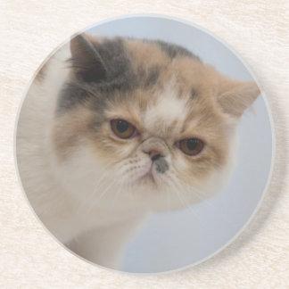 Grumpy Face Cat Sandstone Coaster