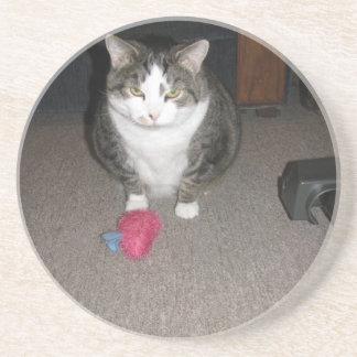 Grumpy Fat Cat is not amused Sandstone Coaster