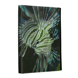Grumpy Fish iPad Cases