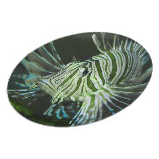 Grumpy Fish Plate