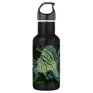 Grumpy Fish Stainless Steel Water Bottle