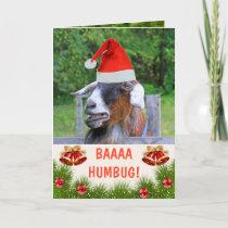 Grumpy Goat Christmas Holiday Card